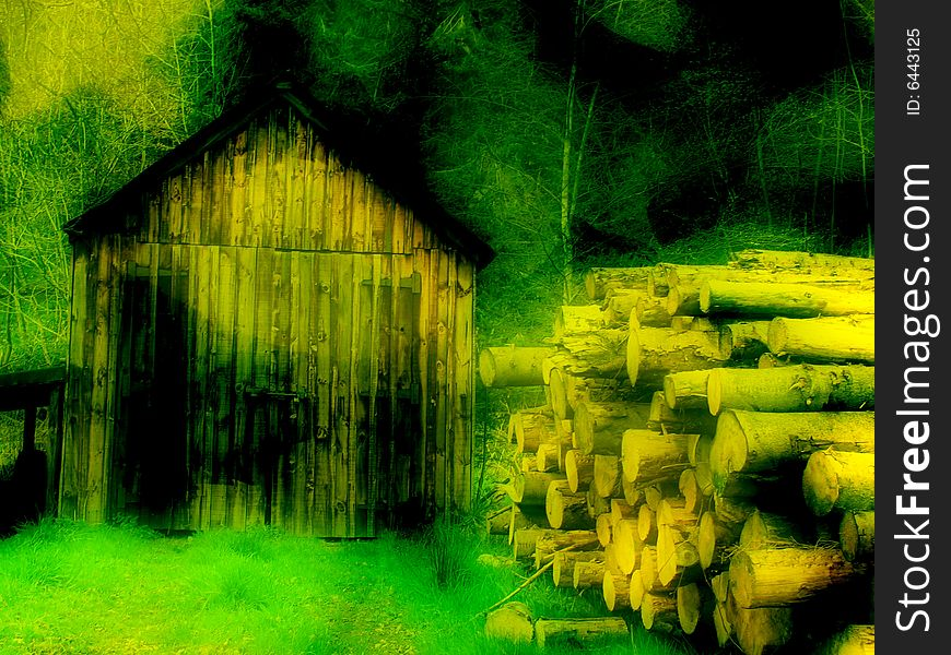 Old shed and log pile