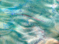 Free Fish In Polluted Water Royalty Free Stock Photos - 64481718