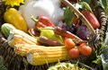 Free Basket Full Of Vegetables Stock Images - 6450334