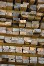 Free Pile Of Wood Royalty Free Stock Photo - 6453715