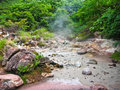 Free Volcanic Mud Pool With Bubbles In A Green Environment Royalty Free Stock Photography - 6457837