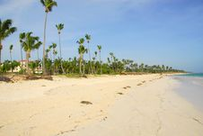 Free Punta Cana Beach Stock Images - 6451354