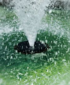 Free Water Fountain Spray Stock Images - 6451434