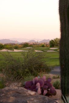 Free Golf Course In The Arizona Desert Royalty Free Stock Image - 6451666