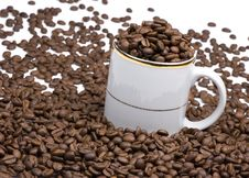 Free White Cup And Coffee Beans Stock Photo - 6452300