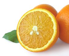 Free Juicy Orange Stock Photos - 6453523
