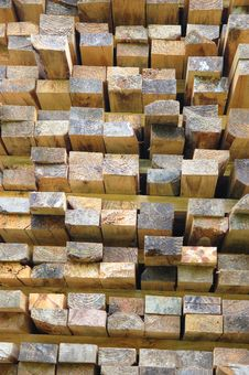 Free Pile Of Wood Stock Photography - 6453722