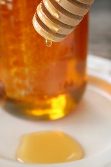 Free Honey II Stock Image - 6453881