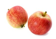 Free Apples Stock Photography - 6455522