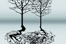 Tree With Reflection Royalty Free Stock Images
