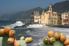 Free Camogli 3 Royalty Free Stock Images - 6457229