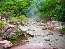 Volcanic Mud Pool With Bubbles In A Green Environment Royalty Free Stock Photography
