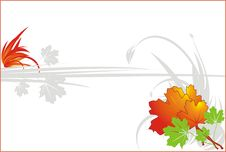 Free Autumn Leaves. Decorative Background For Card Royalty Free Stock Images - 6458079
