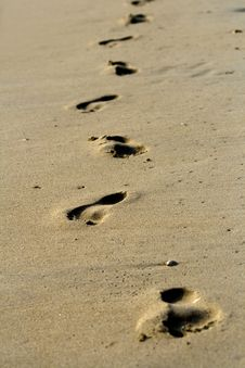 Free Footprints Stock Images - 6459204