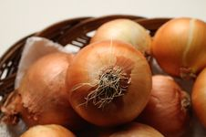 Free Little Onions Royalty Free Stock Photography - 6459667