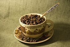 Free Coffee Beans In The Cup Stock Photography - 6459802