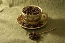 Free Coffee Beans In The Cup Royalty Free Stock Image - 6459806