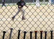 Baseball Bats Royalty Free Stock Image