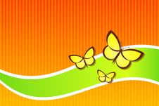 Free Butterflies Royalty Free Stock Photos - 6461388