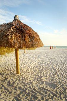 Free Palm Umbrella On The Beach Stock Photos - 6465043