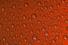 Free Water Drops Royalty Free Stock Photography - 6466827