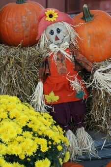 Free Scarecrow And Pumpkin Autumn Decoartion Royalty Free Stock Image - 6467146