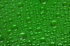 Free Water Drops Stock Photo - 6467900