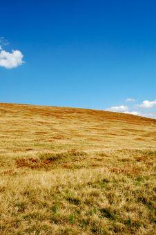 Free Alpine Meadow Stock Photo - 6468650