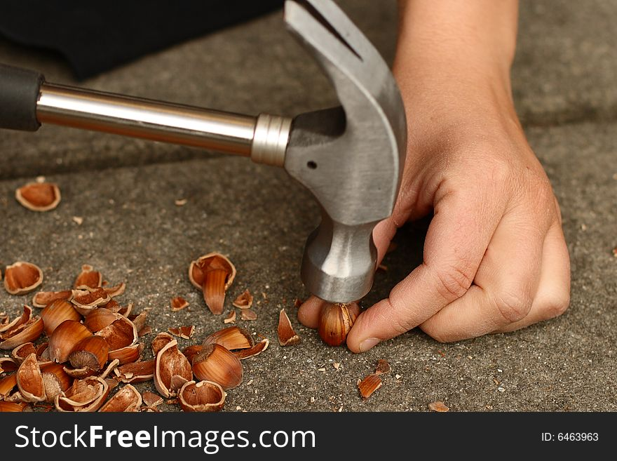 Opening a Hazelnut