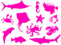 Free Sea-life Silhouette Royalty Free Stock Photo - 6472805