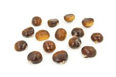 Many Ripe Chestnuts - Isolated On White Background Royalty Free Stock Photos