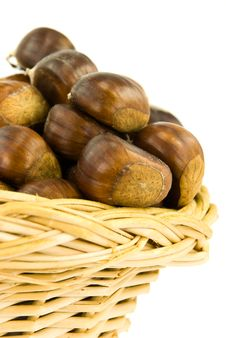 Many Ripe Chestnuts - Isolated On White Background Royalty Free Stock Image