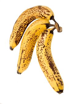 Free Decaying Bananas Stock Photos - 6472733