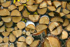 Free Stacked Winter Logs Stock Photography - 6473642