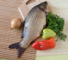 Free Carp Fish Stock Photo - 6474050