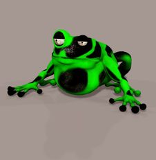 Free Frog Stock Photography - 6475162