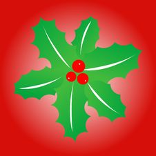 Free Mistletoe Royalty Free Stock Photo - 6476525