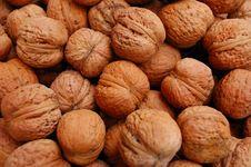 Free Walnuts Stock Photos - 6476793