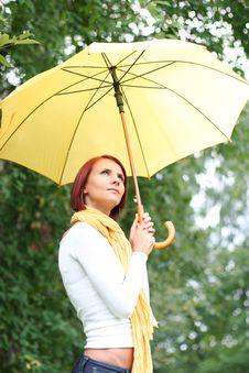 Free Umbrella Royalty Free Stock Photography - 6477377