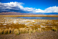 Free Lake In Bright Multi-colored Steppe Royalty Free Stock Image - 64701466