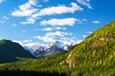 Summer Mountains Snow-capped Peaks Stock Photography