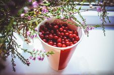 Free Cranberry In A Glass Stock Photos - 64717473