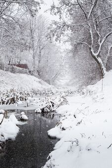 Free Snowing Over A Winter Stream Royalty Free Stock Images - 64777809
