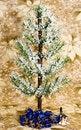 Free Winter Holiday Tree Stock Photos - 6482773