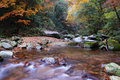 Free In The Fall Of The Stream Royalty Free Stock Photos - 6488248
