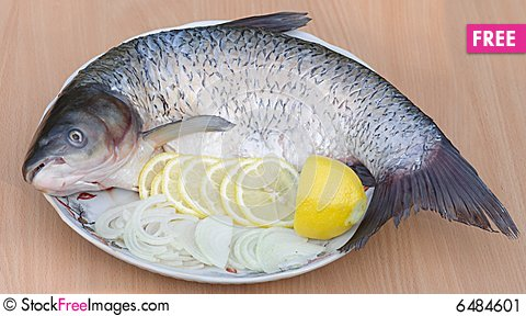Free Grilled Fish, Recipe 3 (series) Stock Image - 6484601