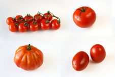 Free 4 Kinds Of Tomatoes Stock Image - 6480761