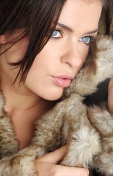 Free Sexy Woman Wearing Brown Fur Royalty Free Stock Photo - 6482275