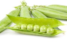 Free Fresh Pea Pods Stock Image - 6482591
