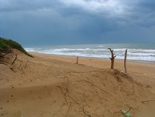 Free Sea Before Storm Royalty Free Stock Photography - 6482907